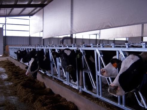 JTP farm 015
